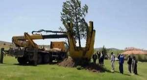 Köyümüzün Ağaçlandırma Çalışmasından Görüntüler